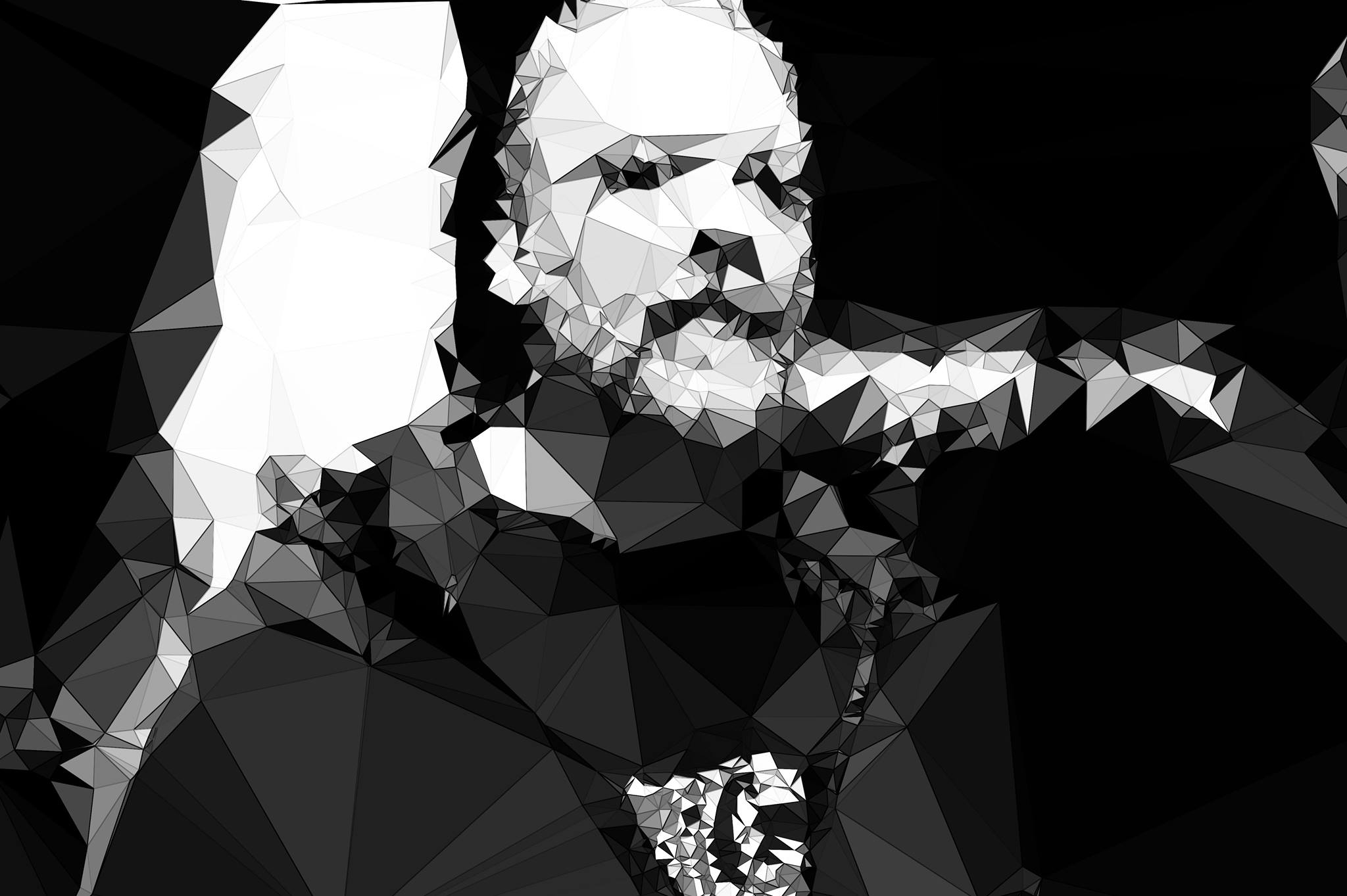 self-portrait | using Delaunay's triangulation
